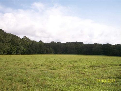 168 Acres in Jefferson County : Fayette : Jefferson County : Mississippi