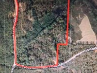 53 ac Tract With Building Sites : Amory : Monroe County : Mississippi