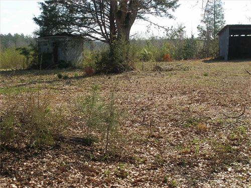 Homesite And Timber Investment Tra : Hamilton : Monroe County : Mississippi
