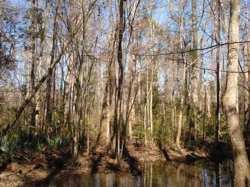 Land For Sale 80 Acres Burke : Waynesboro : Burke County : Georgia