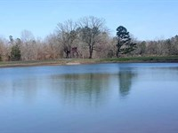 125 Acre Farm 1 Lake, Tons Of Ro : Selmer : McNairy County : Tennessee