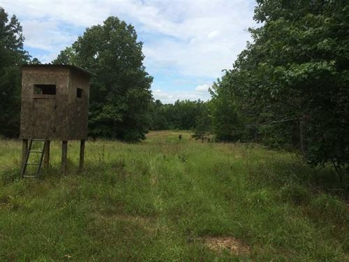 Land 67 Acres For Sale in Carrol : Carrollton : Carroll County : Mississippi