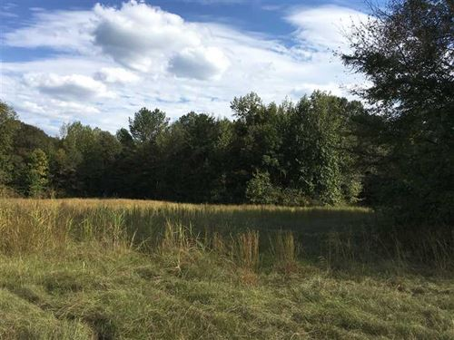Land 240 Acres For Sale in Holme : West : Holmes County : Mississippi