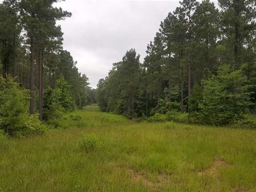 Redfield Tract, Bienville Parish : Ringgold : Bienville Parish : Louisiana