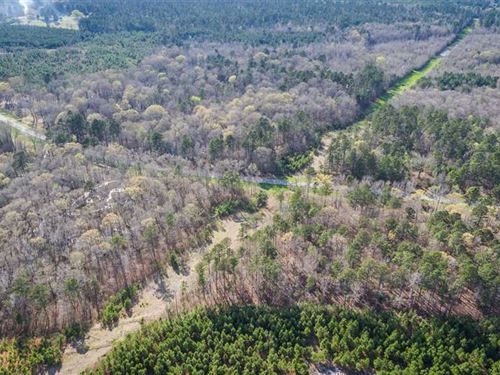 Hall Place, Bossier Parish, 316 Ac : Plain Dealing : Bossier Parish : Louisiana