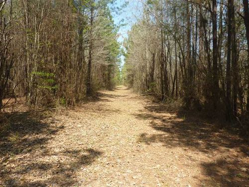 King's Crossing Tract, Webster Par : Minden : Webster Parish : Louisiana