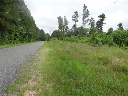 Roy Tract, Bienville Parish, 29 Ac : Castor : Bienville Parish : Louisiana