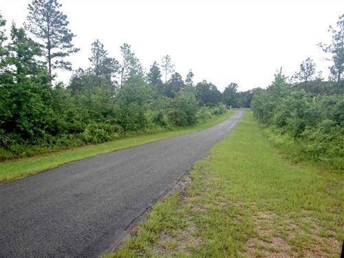 The Velvet Tract, Bienville Parish : Simsboro : Bienville Parish : Louisiana