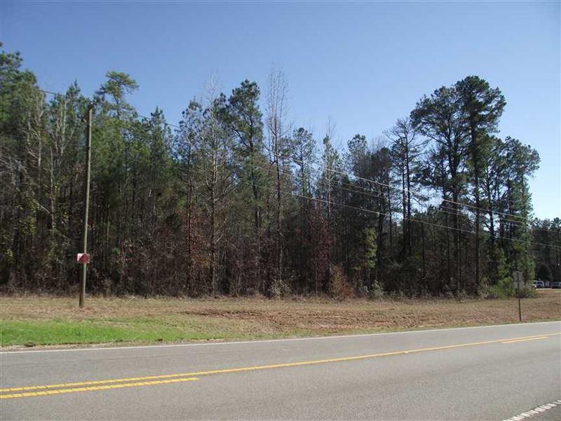 3 Acre Lot on Highway 25 North : Greensboro : Hale County : Alabama