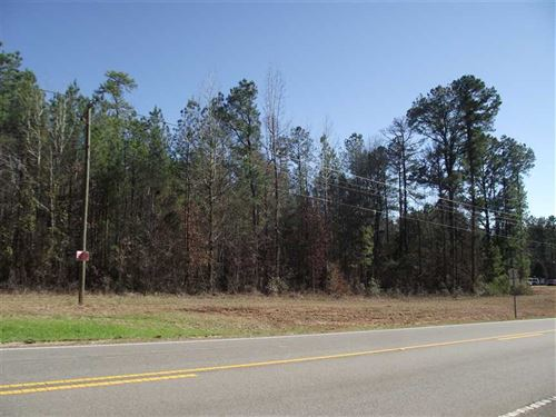 3 Acre Lot on Highway 25 North : Greensboro : Hale County : Alabama
