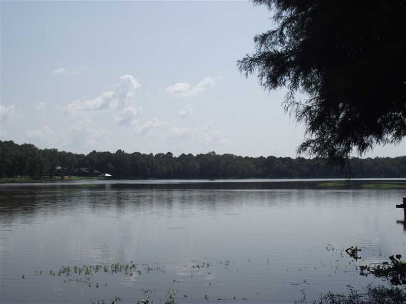 Waterfront Mobile Home With 2 Lots : Akron : Hale County : Alabama
