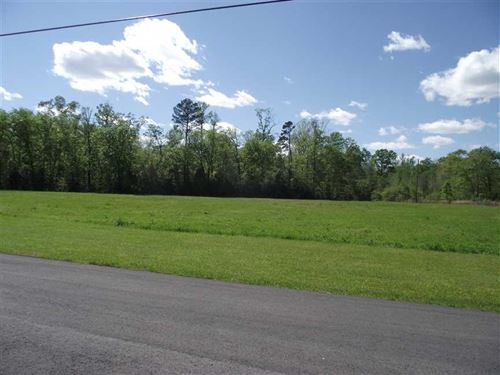 Lot, 2 Acres +, in Black Warrior : Akron : Hale County : Alabama