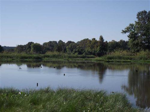 Waterfront Lot, Black Warrior Bay : Akron : Hale County : Alabama
