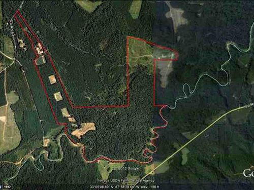 Price Reduced-Investment/Recreatio : Aliceville : Pickens County : Alabama