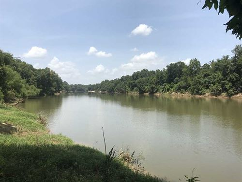 2 Acres of Black Warrior Water : Demopolis : Greene County : Alabama
