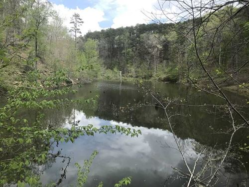 60.48 Acres Located on County Rd : Piedmont : Cleburne County : Alabama