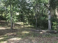 Lot 15.39 Acres on Marilyn Dri : Eufaula : Henry County : Alabama