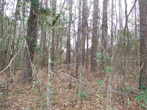 Large Residential Lot in Henry Cou : Abbeville : Henry County : Alabama