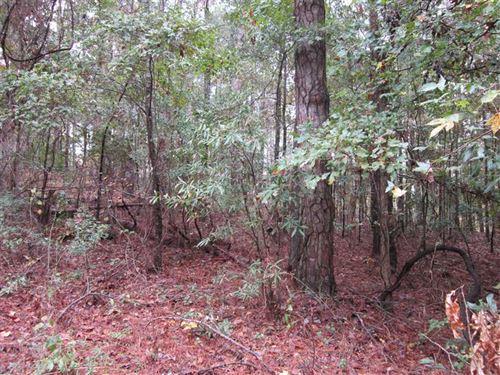 Residential Lot in Eufaula Al-1.39 : Eufaula : Barbour County : Alabama