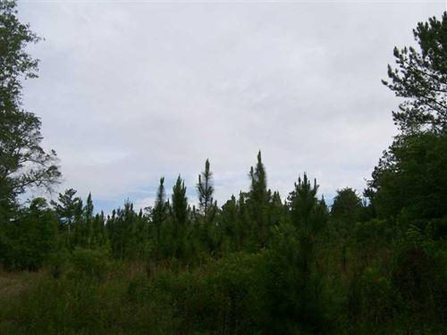 80 Acre Tract in Eufaula, AL : Eufaula : Barbour County : Alabama