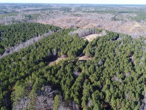 Hunting, Development OR Timber Lan : Booneville : Prentiss County : Mississippi