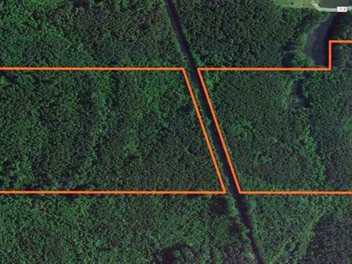 51.5 Acres CR 1151 Plantersville : Plantersville : Lee County : Mississippi