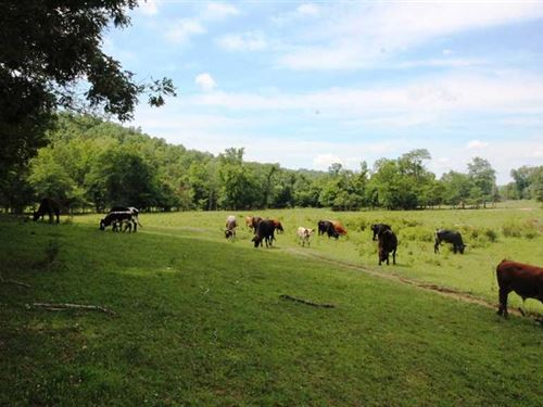 200 Acres With Mobile Home For Sal : Mill Spring : Wayne County : Missouri