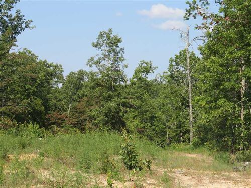 40 Acres For Sale in Reynolds Coun : Ellington : Reynolds County : Missouri
