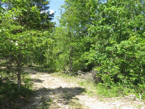 5 Acres For Sale in Reynolds Count : Redford : Reynolds County : Missouri