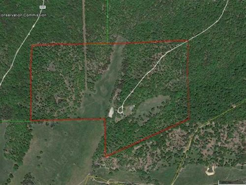 91 Acre Farm For Sale in Reynolds : Ellington : Reynolds County : Missouri