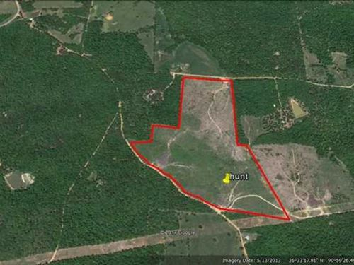 105 Acres For Sale in Ripley Count : Doniphan : Ripley County : Missouri