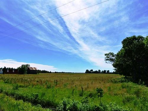 38 Acres For Sale in Butler County : Harviell : Butler County : Missouri