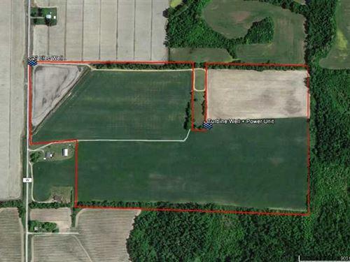 77 Acres Farmland For Sale in Ripl : Neelyville : Butler County : Missouri