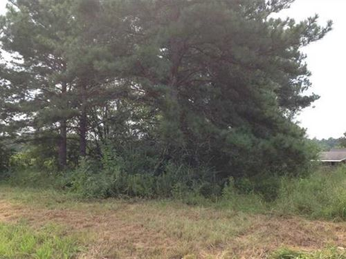 Lot For Sale in Established Subdiv : Weaver : Calhoun County : Alabama