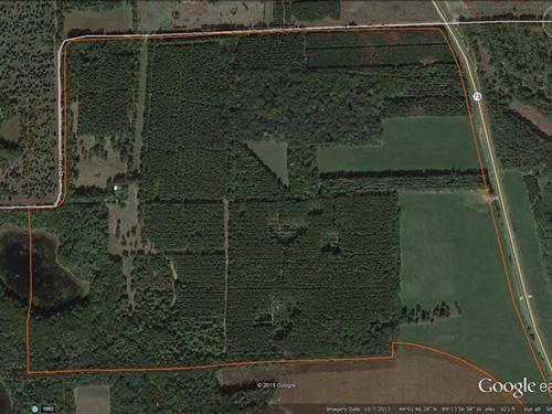 222 ac of Managed Hunting And Timb : Wautoma : Waushara County : Wisconsin