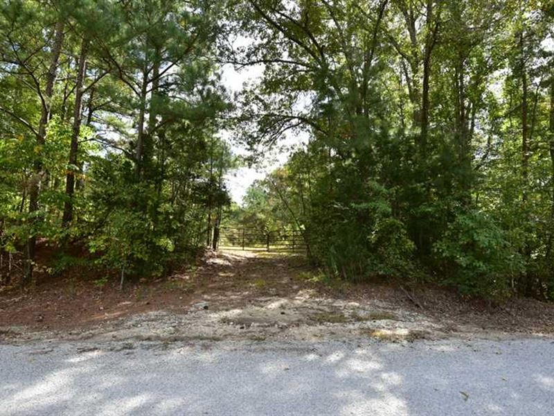 Wooded Estate Site For Sale : Somerville : Fayette County : Tennessee
