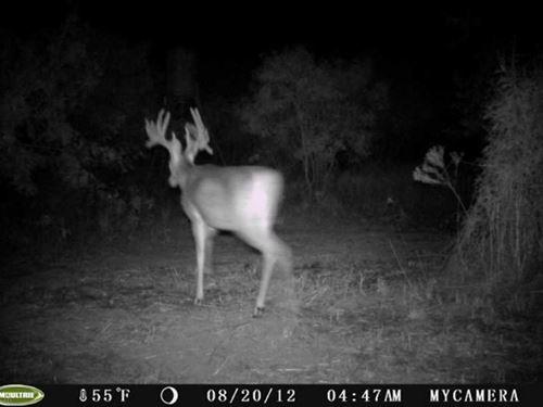 Superb Recreational Property Near : Henrietta : Clay County : Texas