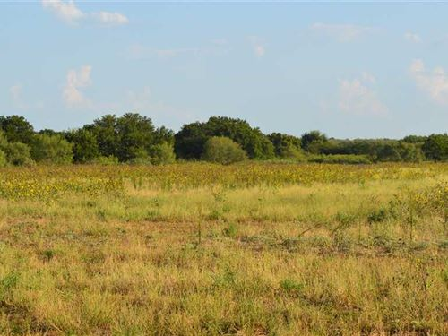 Oak Creek Ranch, 241 Acres, Young : Loving : Young County : Texas