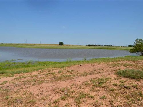 Nice 106 Acre Farm With Grazing AN : Wichita Falls : Wichita County : Texas