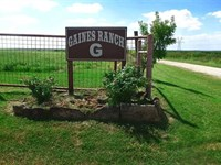 Horse Lovers Must See, 97.299 Acre : Petrolia : Clay County : Texas
