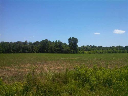 20+ Ac Pasture & Woods in Rowan Co : Rockwell : Rowan County : North Carolina
