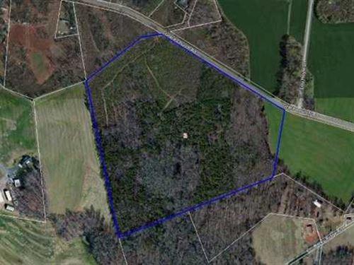 43 Acres in Newton, Nc, Catawb : Newton : Catawba County : North Carolina