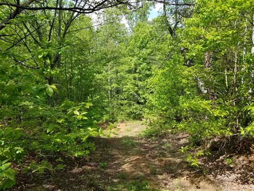 13+ Acres w/ Stream in Burke Count : Connelly Springs : Burke County : North Carolina