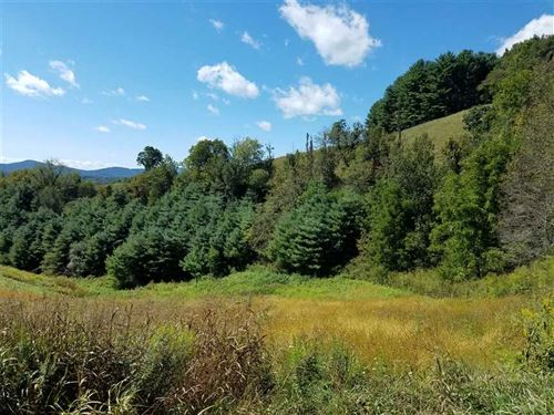 11+ Acre Estate Lot With Long Rang : Grassy Creek : Ashe County : North Carolina