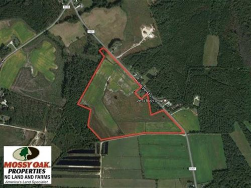 Reduced, 58 Acres of Farm And Tim : Whiteville : Columbus County : North Carolina