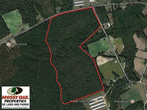 Under Contract, 101 Acres of Timb : Magnolia : Sampson County : North Carolina