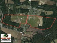 131 Acres of Farm And Timber Land : Lumberton : Robeson County : North Carolina