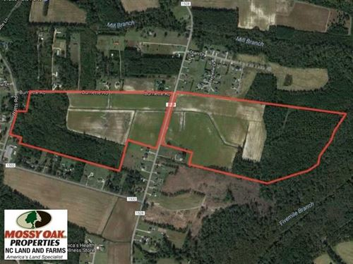 Reduced, 131 Acres of Farm And Ti : Lumberton : Robeson County : North Carolina