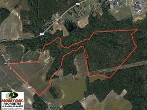 119 Acres of Farm And Timber Land : Lumber Bridge : Hoke County : North Carolina