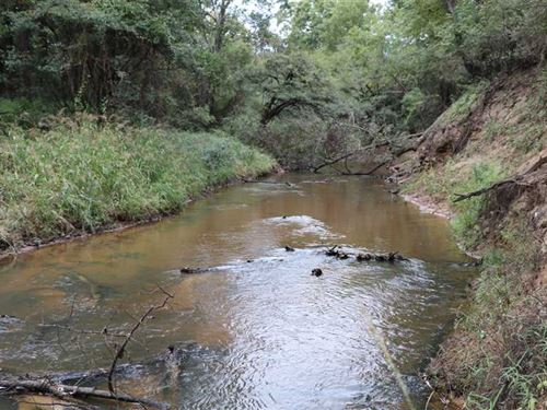 Sabine River Preserve, Hunting Tr : Big Sandy : Upshur County : Texas